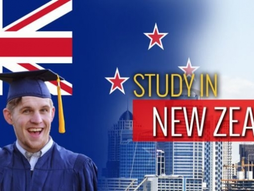 Best-Cities-to-Study-in-New-Zealand-800x384