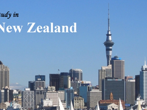 Study-in-New-Zealand-main-590x332